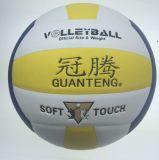 Volleyball, BerufsVolleyballs