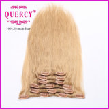 2016 Price Price Wholesale Clip in Hair Extension