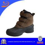 Gaines de sûreté de Mens de mode (XD-119)