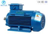 Высокое эффективное горячее качество сбывания широко используемое главное электрический двигатель 3 участков асинхронный