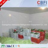 Chambre froide mobile de Guangzhou pour des hommes d'affaires du Nigéria
