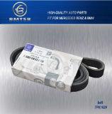 Cinghia automatica 7pk1629 11281742475/11287833264 della gomma naturale V Ribbied di buona qualità del fornitore
