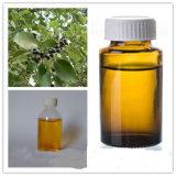 Petróleo esencial del extracto natural puro del jengibre