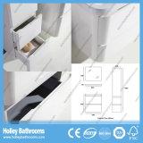 Accessori moderni eccellenti della stanza da bagno del MDF di stile dell'Australia con il Governo laterale (BC115V)