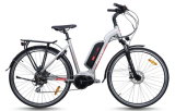 El modelo de la ciudad, Mediados de-Conduce la bici eléctrica del motor (TDB15Z)
