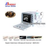 Escáner de Productos Veterinarios Equinos Ultrasonido