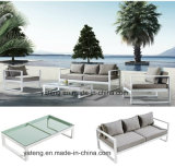 Euro-Design Highquality Outdoor Garten Aluminum Furniture Sofa Set mit Single u. Double Seat Waterproof 100% (YT956)