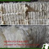 Fibra canapa/del sisal di un grado 100kg/Bale bianco