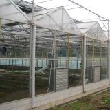 Serra intelligente commerciale di vetro della Cina Multispan