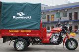 Моторизованная управляя польза типа и пассажира для трицикла 3 колес