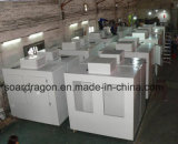 CER Refrigeration Ice Box mit 1000L Capacity