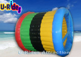 Цветастый раздувной шарик ролика воды на озере