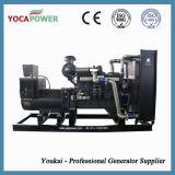 300kw Generator com China Diesel Engine