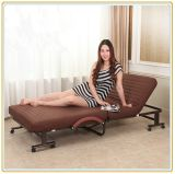 Einzelnes Folding Bed mit Wheeled Base und Brown Mattress 190*70cm