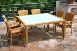 Het dineren Set (GT-27071S) voor Hotel en Home