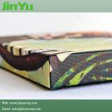 tela di canapa allungata stampa solvibile del getto di inchiostro di lucentezza 380GSM