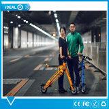 Bicyclette électrique de logo de personnalisation pliant le vélo électrique pour la neige de plage tout le terrain