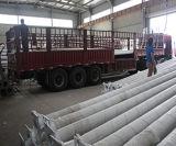 Postes de réverbère de fer de moulage de qualité d'approvisionnement de la Chine