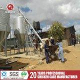 De Kooien van het Gevogelte van Oeganda de Soedan voor de Braadkip van de Laag (A-3L90)