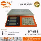 Escala Haoyu nuevo tipo digital de sobremesa Platfrom Precio Computing