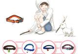 Collar de Catoon del perrito del gato del perro del producto del animal doméstico (C010)
