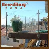 Vloer - de opgezette Post van het Traliewerk van het Glas van Roestvrij staal 304 voor Terras (sj-H915)