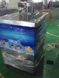 Mk80-2 Two Molds Ice Lolly Machine (CE UL)