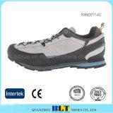 通気性のスポーツの靴を並べる一義的な様式の網
