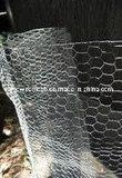 Sailin galvanizó la cerca hexagonal del conejo de la tela metálica