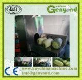 Máquina raspando de Peeler da máquina de casca da papaia