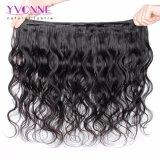 最上質のバージンの毛のブラジルの人間の毛髪の織り方