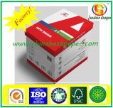 Papel de embalaje aséptico sin recubrir 120 g