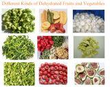 Secadora vegetal, deshidratador de la fruta