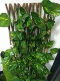 低価格の装飾のための柳細工の庭のトレリス