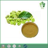Grünes Kaffeebohne-Auszug-Gesamtchlorogensäuren 10%~70%