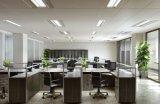 창고 점화를 위한 방수 폭발 방지 LED 세 배 증거 램프
