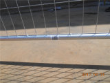 普及した様式によって電流を通される鋼鉄安く適用範囲が広い囲う一時塀(XMM-TP7)