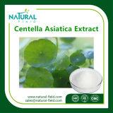 Порошок выдержки 10%-95% Asiaticoside Centella Asiatica/выдержка завода Asiaticosides