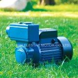 TPS-80 구리 철사 Brss 임펠러 수도 펌프 모터