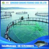 Gabbia netta annodata principale di piscicoltura di acquicoltura dell'HDPE del mare profondo