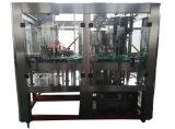 De automatische Drank die van het Vruchtesap het Vullen en van de Verpakking Machine maken