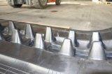 (750*150) El descargador caliente de la venta sigue las pistas de goma