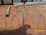 입히는 PVC를 가진 Bto-22에 의하여 직류 전기를 통하는 면도칼 철사 담