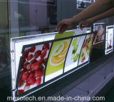 Caixa leve magnética de cristal magro de painel do diodo emissor de luz para indicadores de anúncio de suspensão