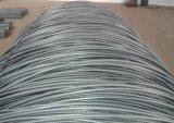 Acciaio dello Screw-Thread/tondo per cemento armato d'acciaio in bobina usata per costruzione