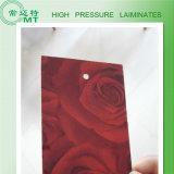 HPL imperméabilisent la partie supérieure du comptoir de HPL /HPL/stratifié de pression