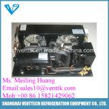 Unità di condensazione semiermetica di Coolded dell'aria per il sistema di refrigerazione