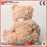 El regalo rellenó el oso animal de los juguetes