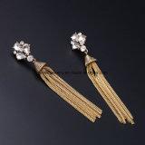 女性のための長いパーソナリティーふさのイヤリングの半貴宝石類