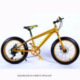 新式の4.0浜の脂肪質のタイヤのバイク(ly22)